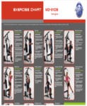 Gym Exercise Chart1 For Exercise Chart Templates For Exercise Chart Templates