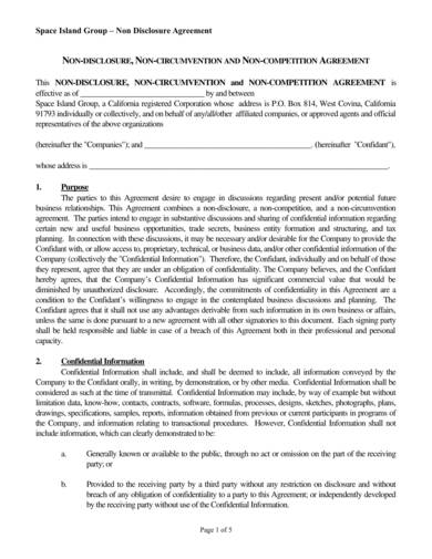 Editable Nondisclosure And Noncompete Agreement Sample 1