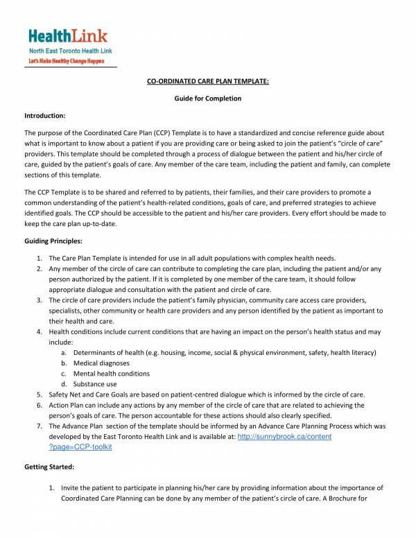 Coordinated Care Plan Template 1 For Patient Care Plan Template Pdf Word