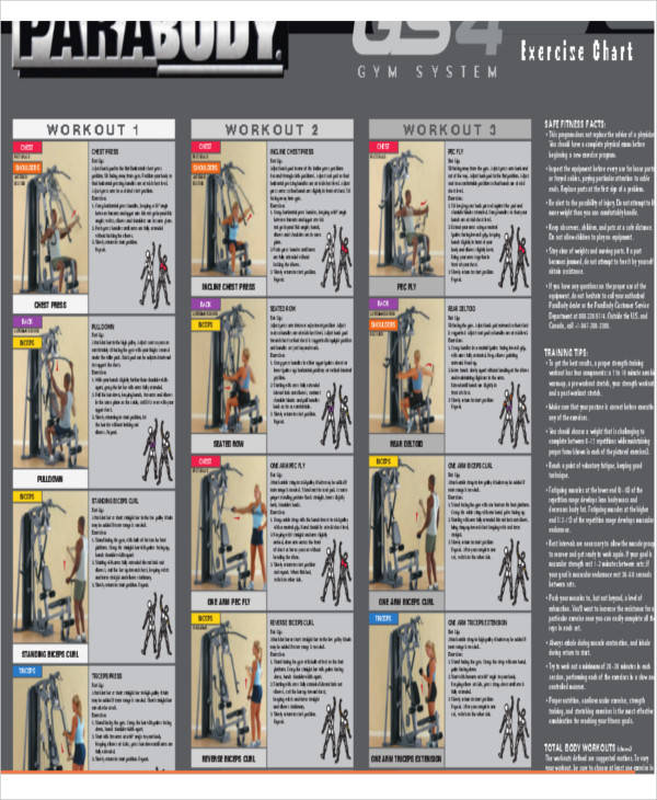 Exercise Workout Chart for exercise chart templates