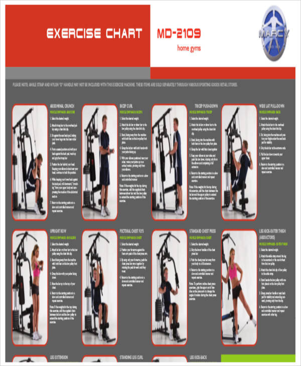 Gym Exercise Chart for exercise chart templates