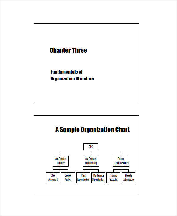 Organizational Structure for analysis sample