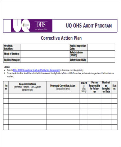 Corrective Action Plan for Action Plan Format